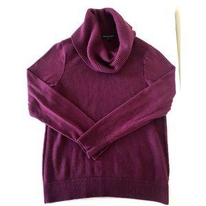 Purple Roll Neck Banana Republic Sweater
